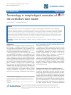 Scholarly article on topic 'Terminology in morphological anomalies of the cerebellum does matter'