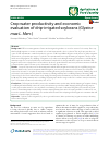 Scholarly article on topic 'Crop water productivity and economic evaluation of drip-irrigated soybeans (Glyxine max L. Merr.)'