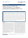 Scholarly article on topic 'Biogenic gold nanotriangles from Saccharomonospora sp., an endophytic actinomycetes of Azadirachta indica A. Juss.'