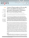 Scholarly article on topic 'Common Pharmacophore of Structurally Distinct Small-Molecule Inhibitors of Intracellular Retrograde Trafficking of Ribosome Inactivating Proteins'