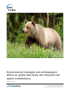 Scholarly article on topic 'Environmental, biological and anthropogenic effects on grizzly bear body size: temporal and spatial considerations'