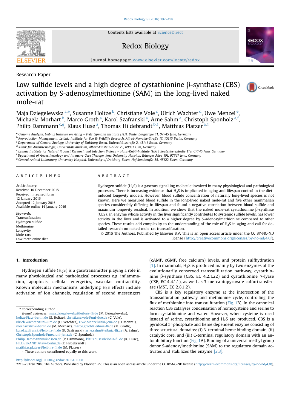 Low sulfide levels and a high degree of cystathionine β