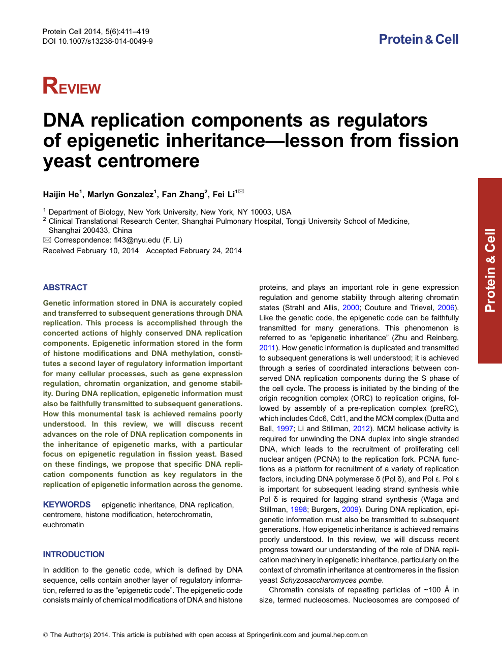 DNA replication components as regulators of epigenetic inheritance