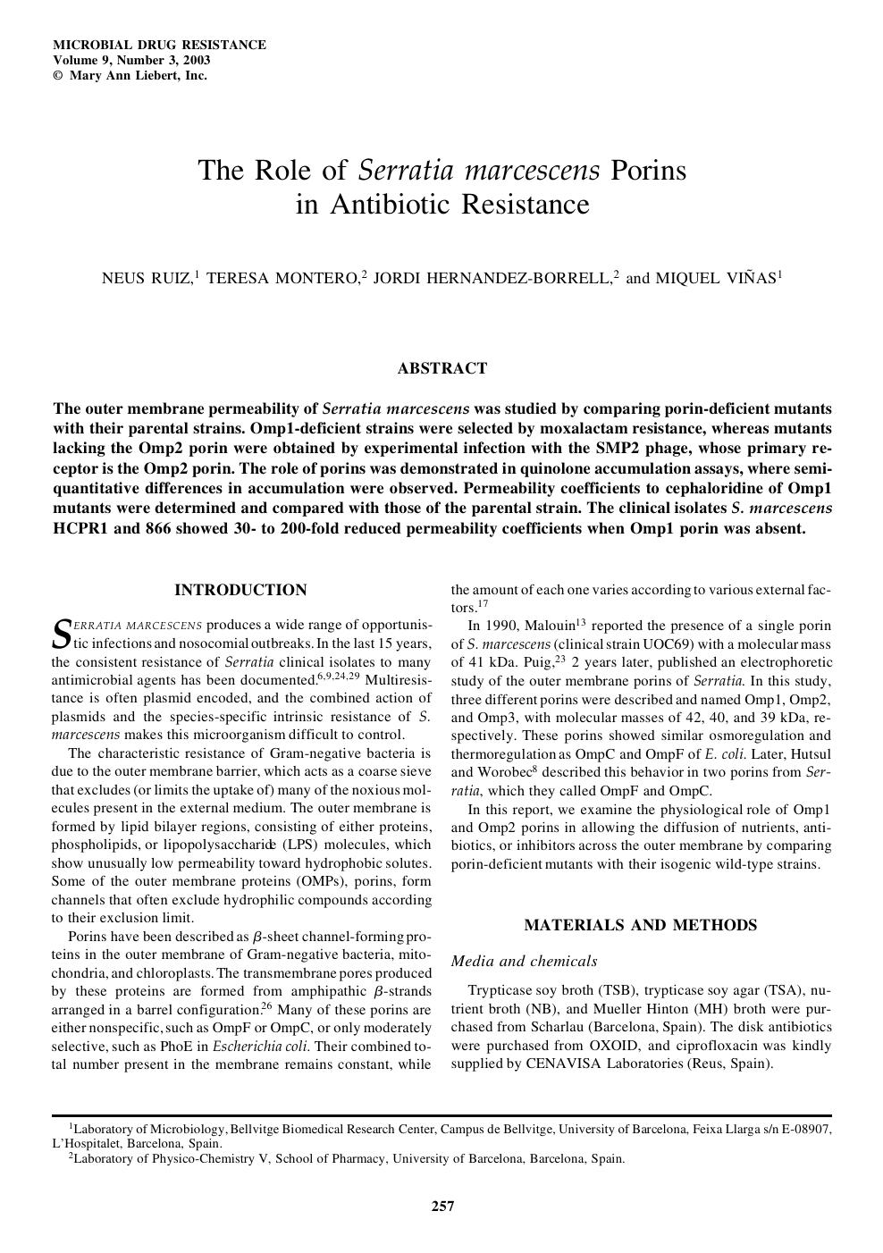 The Role of Serratia marcescens Porins in Antibiotic