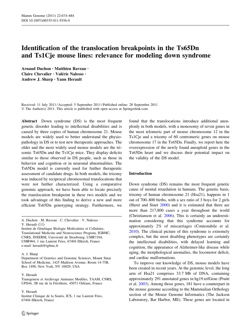 Identification of the translocation breakpoints in the Ts65Dn and
