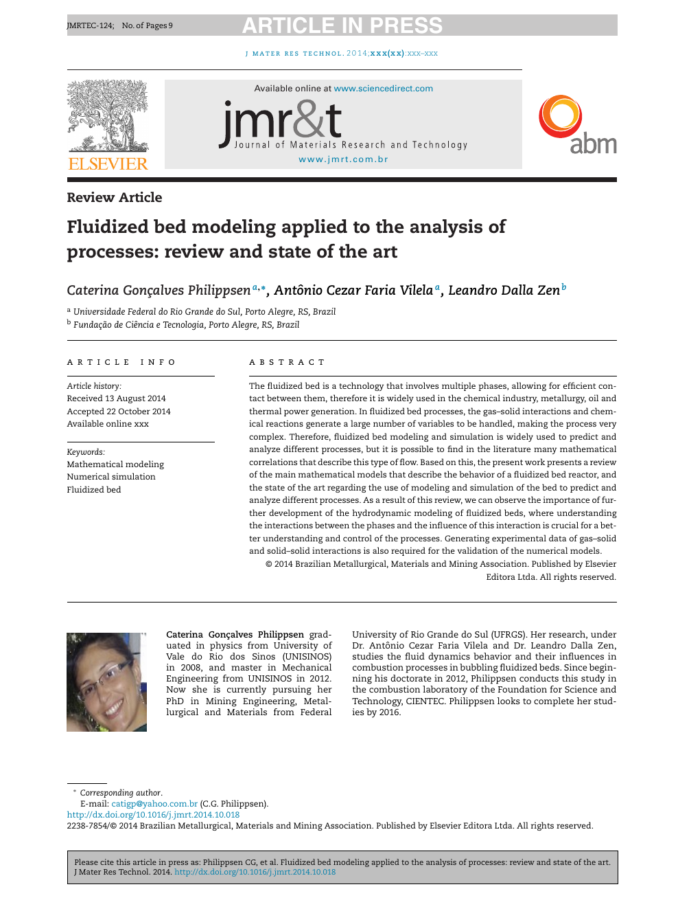 Fluidized bed modeling applied to the analysis of processes