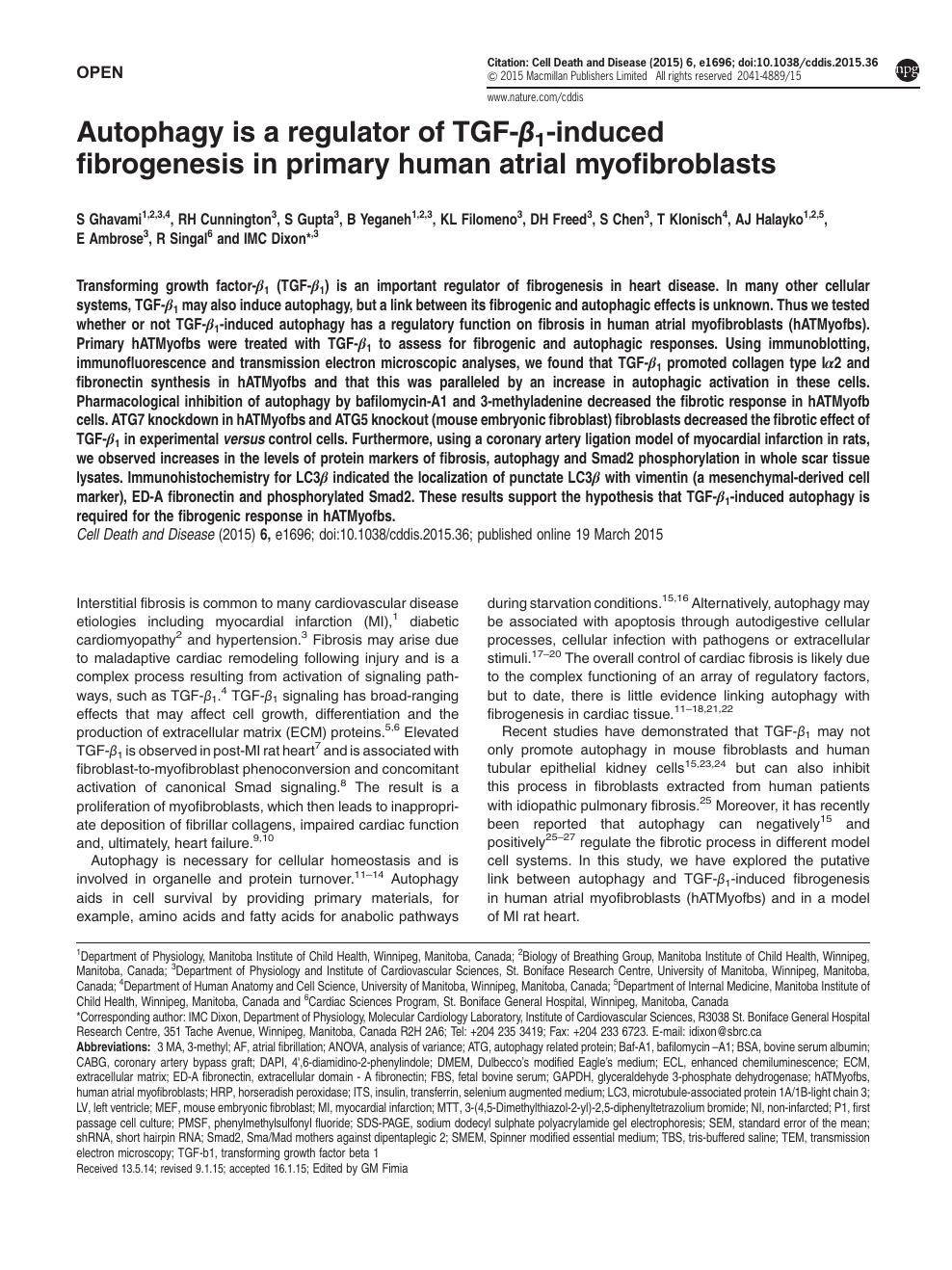 Autophagy is a regulator of TGF-β1-induced fibrogenesis in