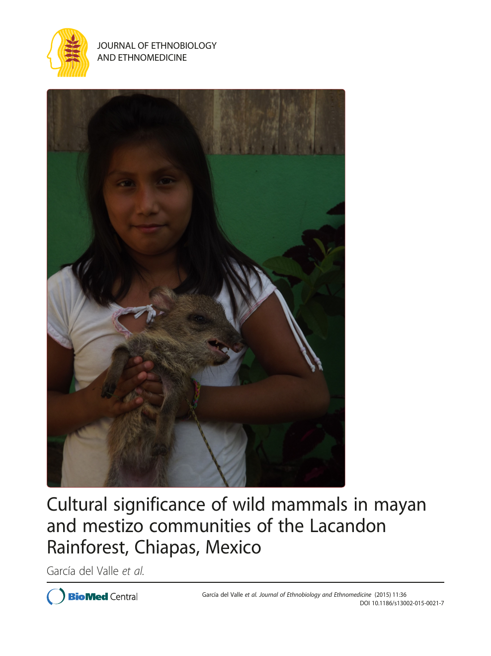 Ana Maria Rios Desnuda cultural significance of wild mammals in mayan and mestizo