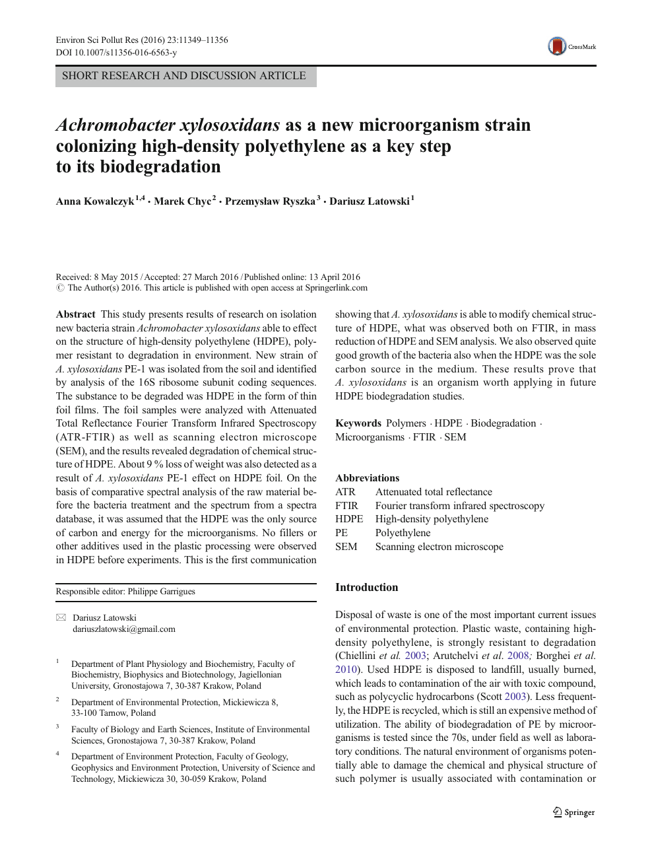 Achromobacter xylosoxidans as a new microorganism strain