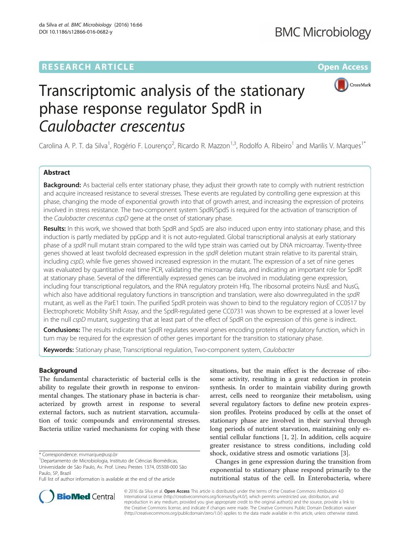 Transcriptomic analysis of the stationary phase response