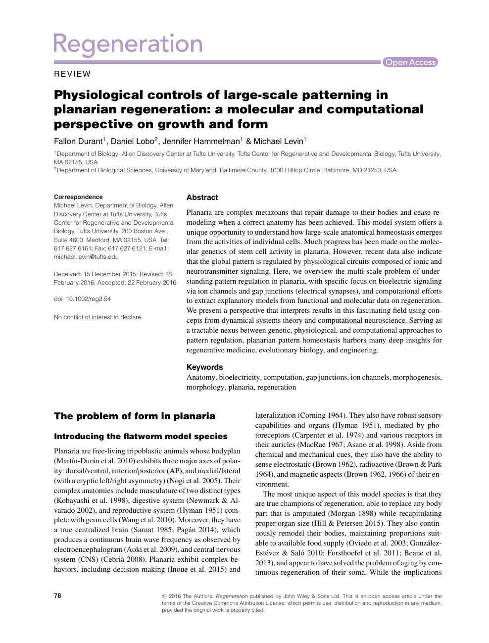 Physiological controls of large-scale patterning in