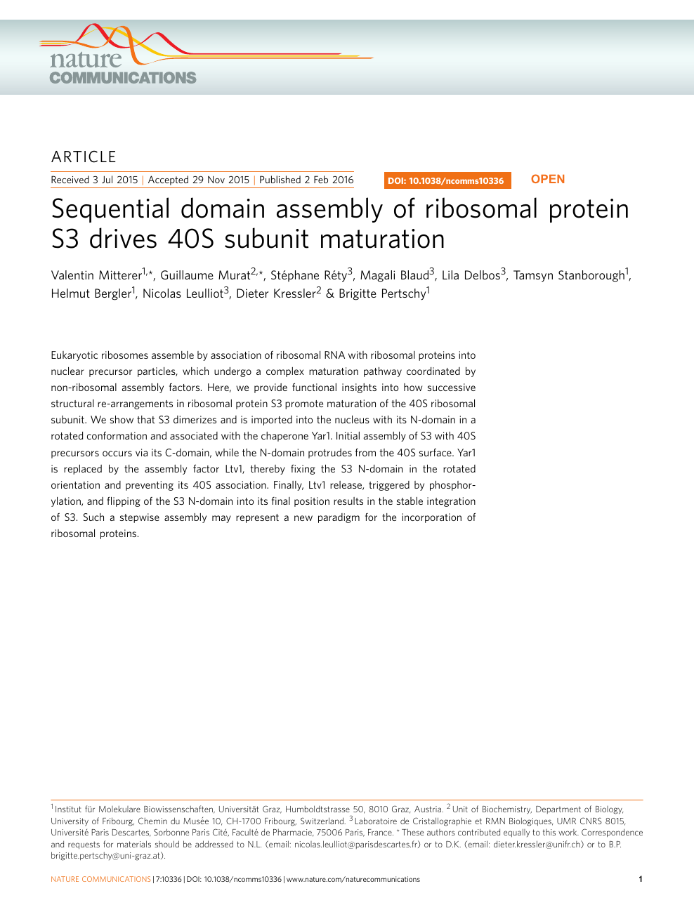 Sequential domain assembly of ribosomal protein S3 drives