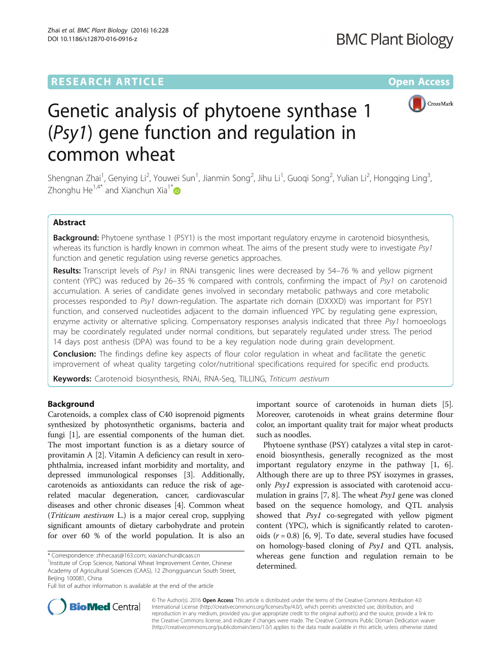 Genetic analysis of phytoene synthase 1 (Psy1) gene function and
