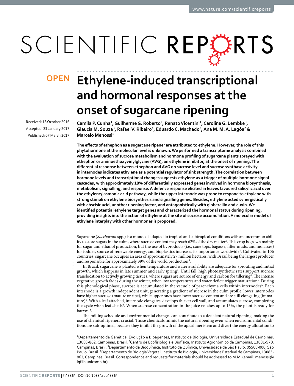 Ethylene-induced transcriptional and hormonal responses at