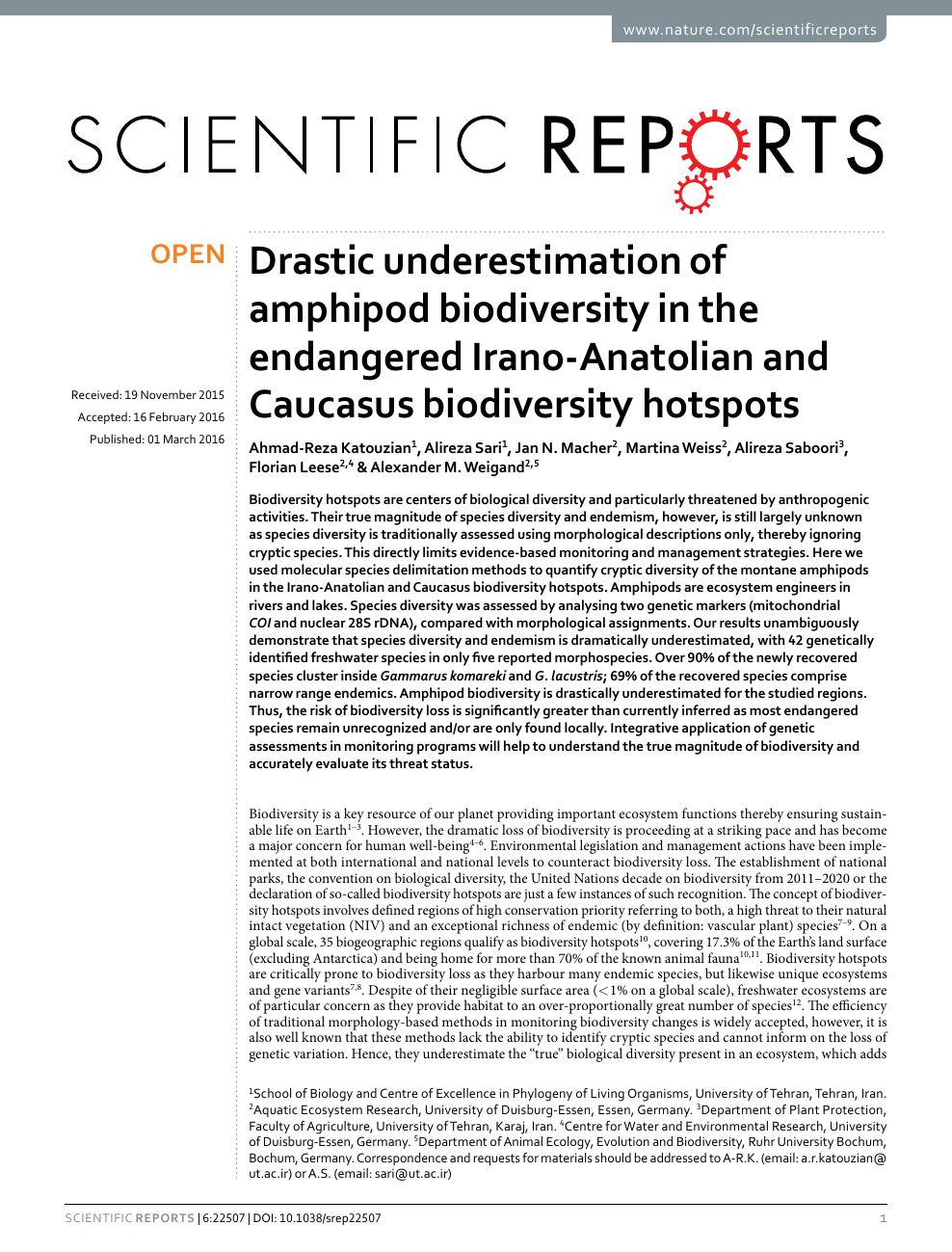 Drastic underestimation of amphipod biodiversity in the