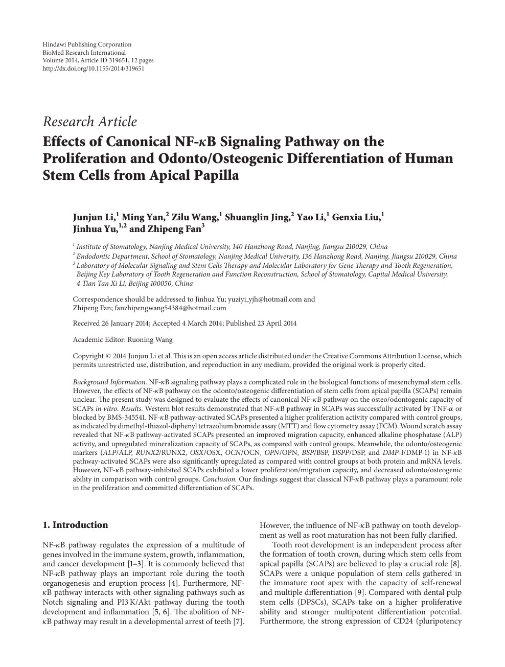 Effects of Canonical NF-κB Signaling Pathway on the