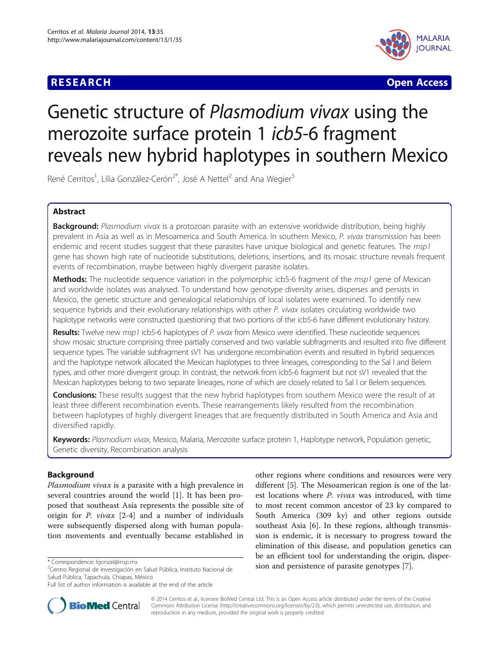 Genetic structure of Plasmodium vivax using the merozoite
