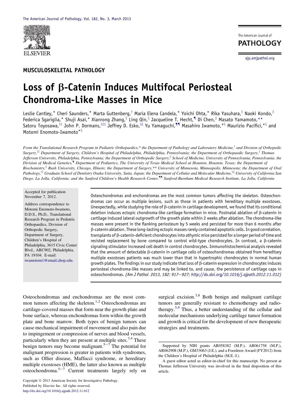 Loss of β-Catenin Induces Multifocal Periosteal Chondroma
