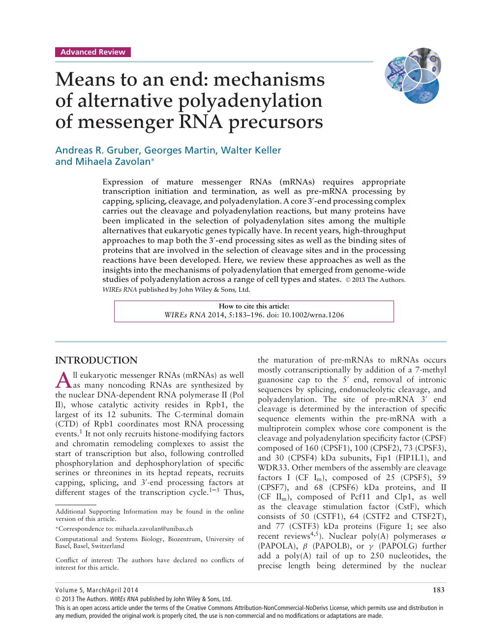 Means to an end: mechanisms of alternative polyadenylation