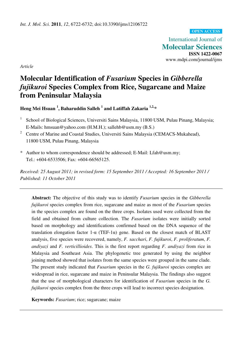 Molecular Identification of Fusarium Species in Gibberella