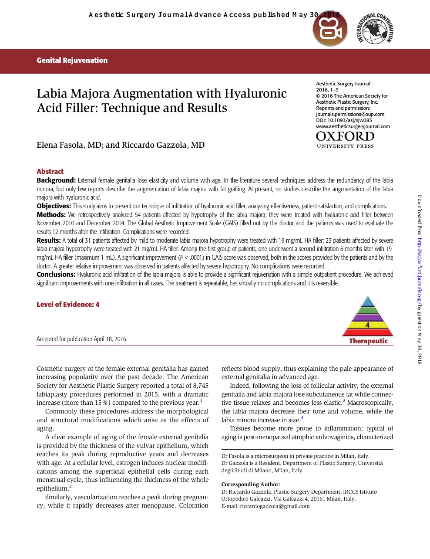 Labia Majora Augmentation with Hyaluronic Acid Filler