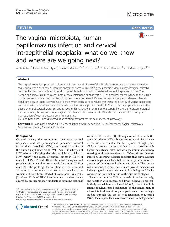 papillomaviridae viral zone)