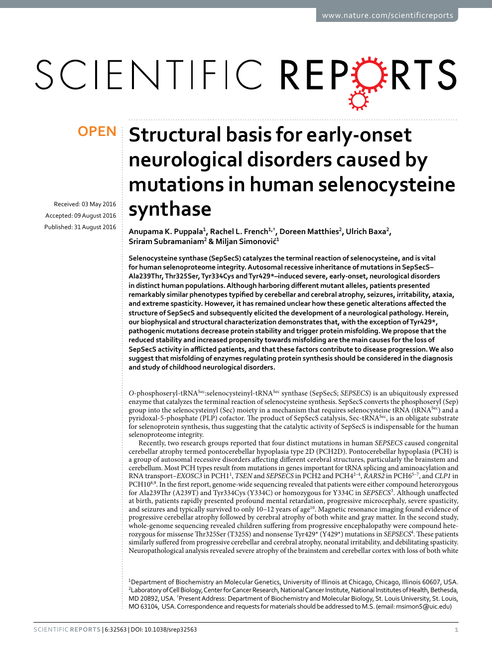 Genetic Mutation May Cause Early Onset >> Structural Basis For Early Onset Neurological Disorders Caused By