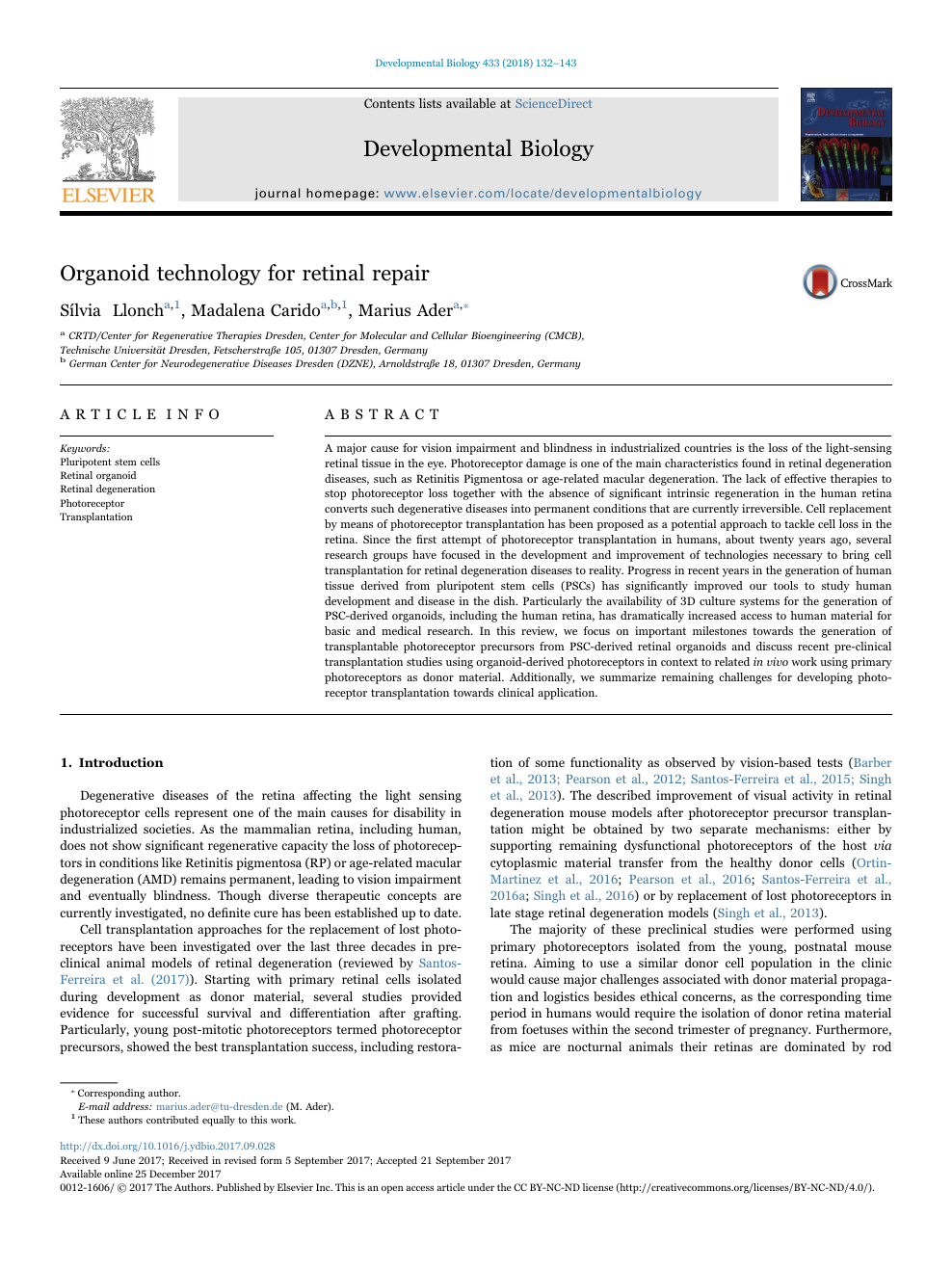 Organoid technology for retinal repair – topic of research