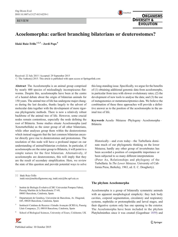 platilhelminthes acoelomorpha